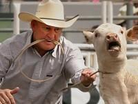 Calf roping 05crop