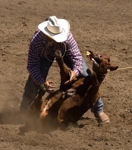 Calf roper at 2006 Russian River Rodeo, Duncans Mills, California