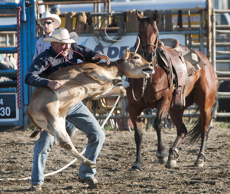 Chilliwack Rodeo