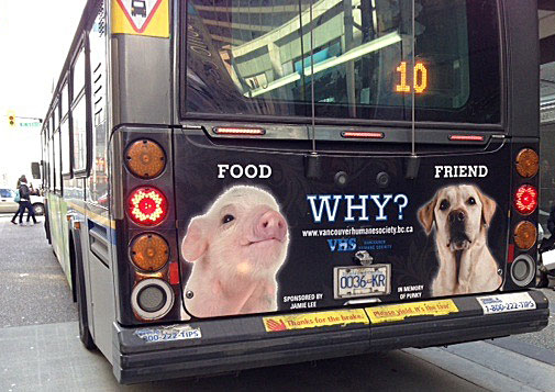 "Photo of ""Food, Friend, Why?"" bus back advertisement"