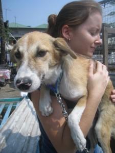 Dog with Ashley